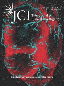 JCI Cover 2012